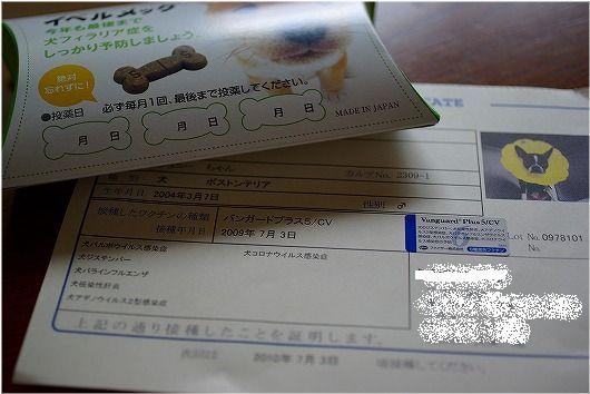 2009.7.3 (5).jpg