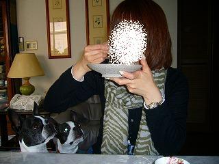 2010年4月〜ジョニー&ウィリー 008.jpg
