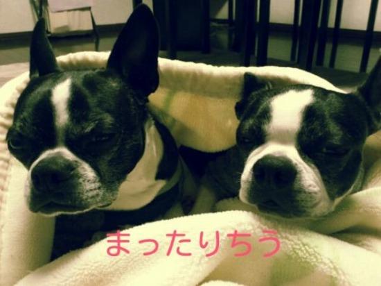 Ao_jWjoCAAIy4ls.jpg