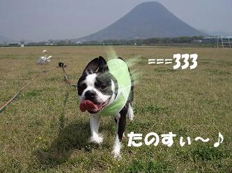 IMGP6010.jpg